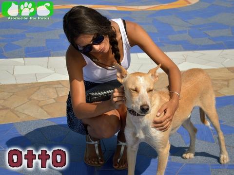 Otto 2